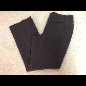 New York & Company Ponte Knit Pull On Pants PL